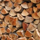 Come scegliere la migliore legna da ardere in Sardegna