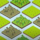 Il ruolo delle foreste nella salvaguardia del clima
