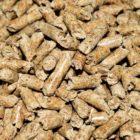 Risparmiare sul riscaldamento: pellet, gas e gasolio a confronto